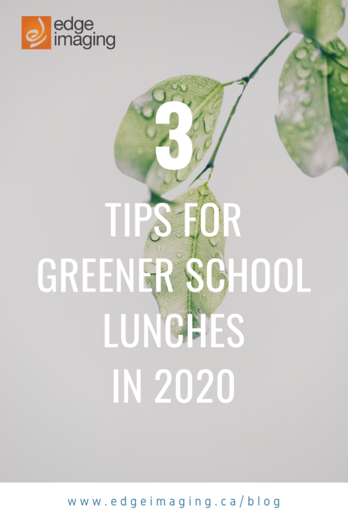 "Here are our top tips for making eco-friendly school lunches as your ""green"" new year's resolution."